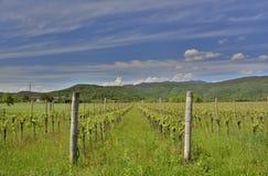 Paysage de ressort près de Cividale del Friuli Photos stock