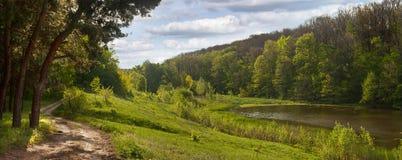 Paysage de ressort - route près de la forêt de pin, à côté d'un étang Photographie stock libre de droits
