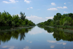 Paysage de ressort sur une rivière brumeuse Photo stock