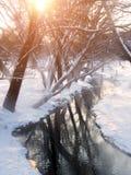 Paysage de ressort - vue tôt de ressort de courant et d'arbres de forêt photo stock