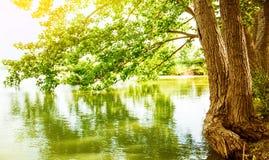 Paysage de rivière image libre de droits