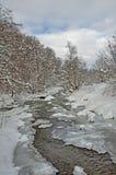 Paysage de rivière d'hiver avec les arbres couverts de neige un jour nuageux Photographie stock libre de droits