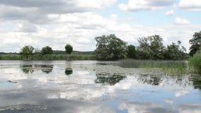 Paysage de rivière de Havel (Brandebourg Allemagne) le long de Havelradweg (chemin de vélo de Havel) banque de vidéos