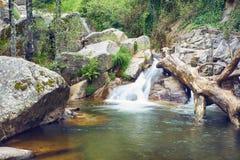 Paysage de rivi?re avec la cascade et un tronc d'arbre tomb? ? l'int?rieur de l'eau photos libres de droits