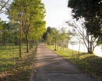 Paysage de route droite sous l'arbre de route d'arbres Image stock
