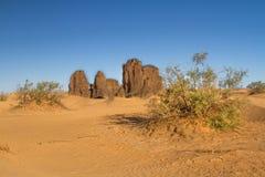 Paysage de Sahara's Djanet, Algérie du sud, Afrique du Nord Photographie stock libre de droits