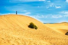 Paysage de Sandy avec la femme sur la dune images stock