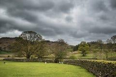 Paysage de secteur de lac avec le ciel orageux au-dessus du fie d'anf de campagne Photos libres de droits