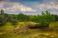 Paysage de steppe avant la tempête Images libres de droits