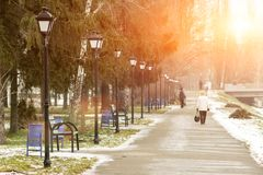 Paysage de Sunny Winter City Park Image libre de droits