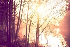Paysage de traînée de lever de soleil Photographie stock
