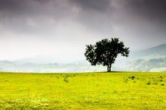Paysage de vallée Image libre de droits