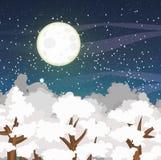 Paysage de vecteur d'hiver avec les dessus des arbres couverts de neige et d'un ciel nocturne étoilé Grande pleine lune Image stock