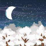 Paysage de vecteur d'hiver avec les dessus des arbres couverts de neige et d'un ciel nocturne étoilé Lune neuve Photos stock