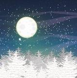Paysage de vecteur d'hiver avec les dessus des sapins couverts de neige et d'un ciel nocturne étoilé Grande pleine lune Photographie stock libre de droits