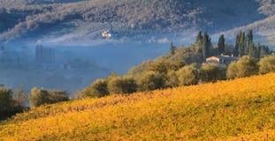 Paysage de vignoble de chianti en automne, Toscane photographie stock libre de droits