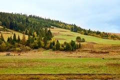 Paysage de village de pays de montagne avec les nuages et le ciel bleu Image libre de droits