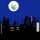 Paysage de ville de nuit et la lune avec la prairie de marijuana Photographie stock