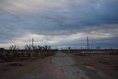 Paysage de ville fantôme d'Epecuen Photos stock