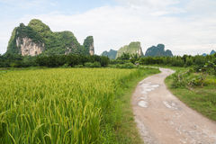 Paysage de Yangshuo Photos stock