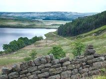 Paysage de Yorkshire avec le mur de pierres sèches Images stock