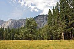 Paysage de Yosemite Photographie stock libre de droits