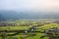 Paysage de Yunnan de gisement de fleurs de graine de colza photos stock
