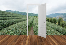 Paysage derrière la porte d'ouverture, 3D Images libres de droits