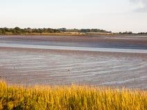 Paysage des appartements de boue dans essex avec la marée de rivière aucune personnes Photos stock