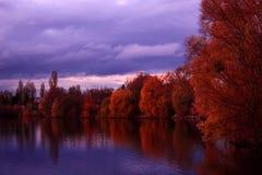 Paysage des arbres d'automne au-dessus du lac images stock