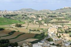 Paysage des champs en terrasse à l'île Gozo, Malte Photographie stock