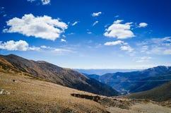 Paysage des montagnes Images stock