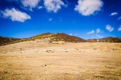 Paysage des montagnes Image libre de droits