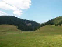 Paysage des montagnes d'Apuseni en Roumanie Image libre de droits