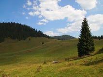 Paysage des montagnes d'Apuseni en Roumanie Images stock