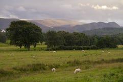 Paysage des montagnes Pâques Ross Scotland R-U Photographie stock libre de droits