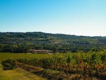 Paysage des vignobles toscans, r?gion de chianti, Italie photos stock