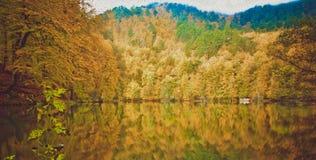 Paysage doux d'automne de vue, parc automnal, nature de chute Photo stock