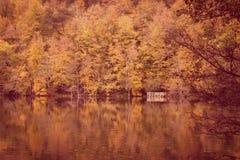 Paysage doux d'automne de vue, parc automnal, nature de chute Photo libre de droits