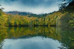 Paysage doux d'automne de vue, parc automnal, nature de chute Photographie stock libre de droits