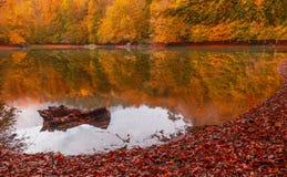 Paysage doux d'automne de vue, parc automnal, nature de chute Image stock