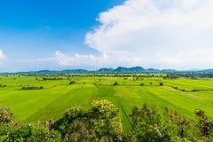 Paysage du gisement de riz avec la montagne vague derrière thailand Photo stock