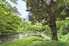 Paysage du jardin de Koishikawa Korakuen à Tokyo avec le SM photo stock