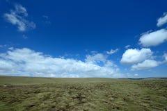 Paysage du Lac Qinghai le long de la route Photographie stock libre de droits
