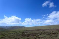 Paysage du Lac Qinghai le long de la route Images stock