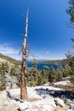 Paysage du lac Tahoe, baie verte Images libres de droits