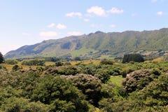 Paysage du Nouvelle-Zélande - chaînes de Tararua Photo libre de droits