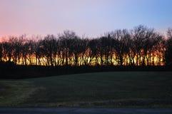 Paysage du sud de l'Illinois à côté d'une route de campagne Photo stock