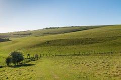 Paysage du Sussex photos stock