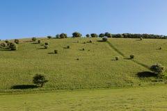 Paysage du Sussex image stock
